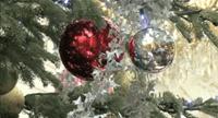 Noël à l'Elysée Film internet
